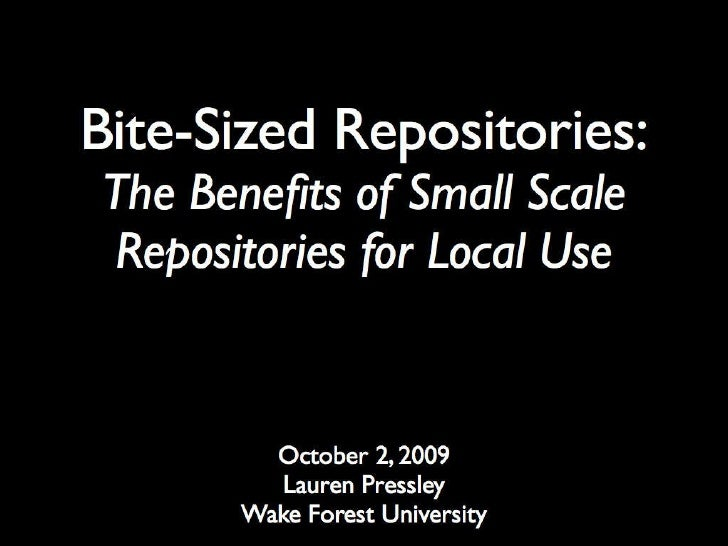 Bite Sized Repositories