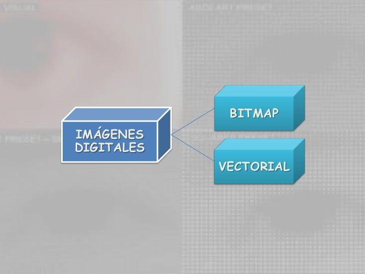 BITMAP<br />IMÁGENES DIGITALES<br />VECTORIAL<br />