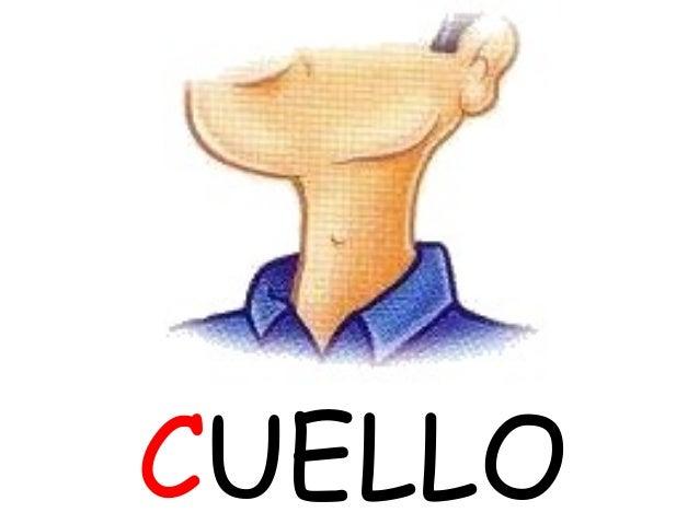 CUELLO