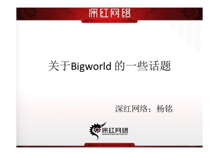 关于Bigworld 的一些话题        深红网络:杨铭