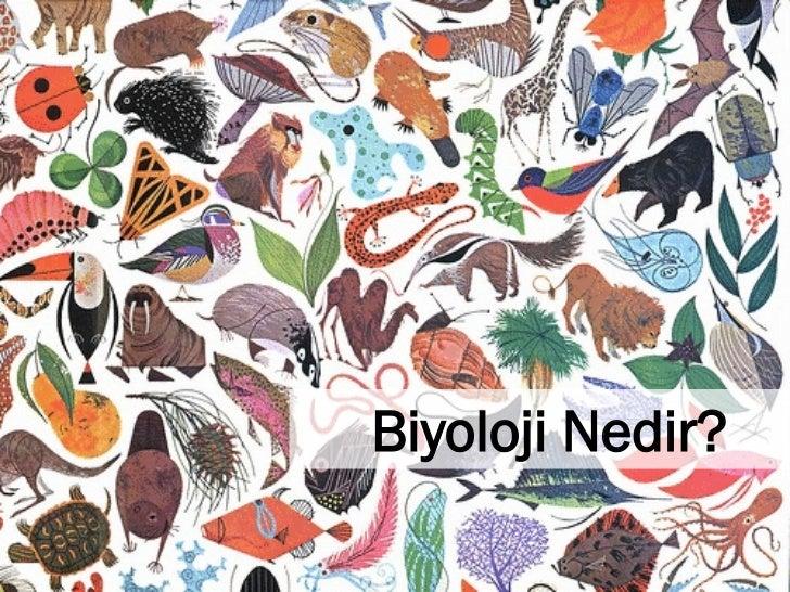 Biyoloji nedir?