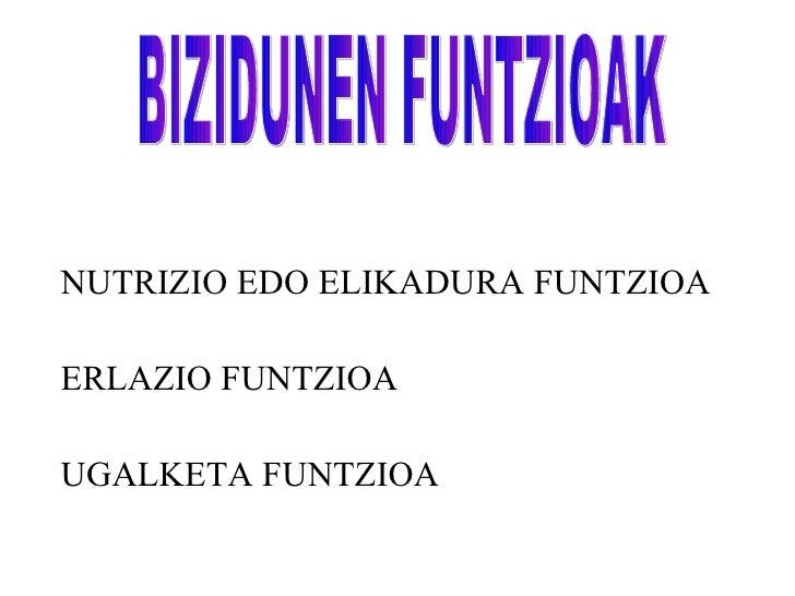 <ul><li>NUTRIZIO EDO ELIKADURA FUNTZIOA </li></ul><ul><li>ERLAZIO FUNTZIOA </li></ul><ul><li>UGALKETA FUNTZIOA </li></ul>B...