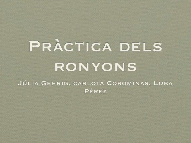 Pràctica dels    ronyonsJúlia Gehrig, carlota Corominas, Luba                Pérez