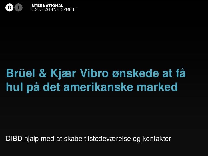 Brüel & Kjær Vibro ønskede at fåhul på det amerikanske markedDIBD hjalp med at skabe tilstedeværelse og kontakter