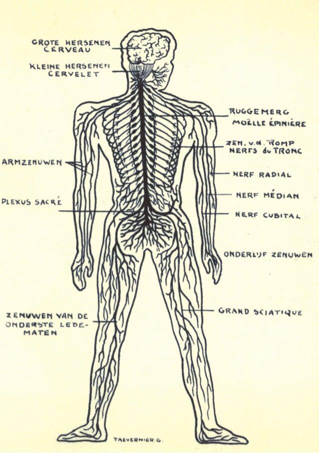 muzische scheurkalender  >  actie: Maak met je lichaam een geluid dat niemand kan horen, enkel jij. Probeer er verschillen...