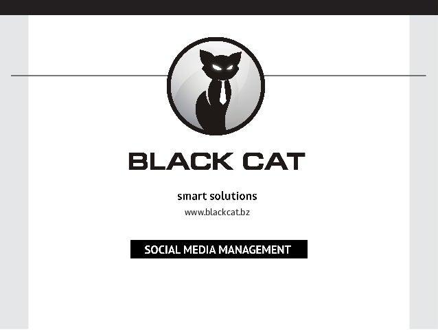 www.blackcat.bz