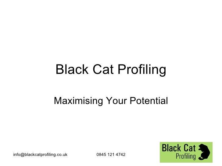 Black Cat Disc