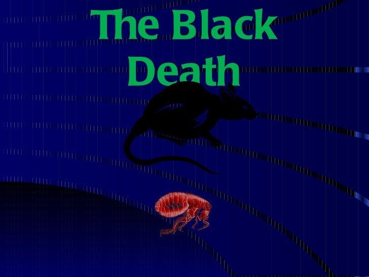 Black death & 100 years war
