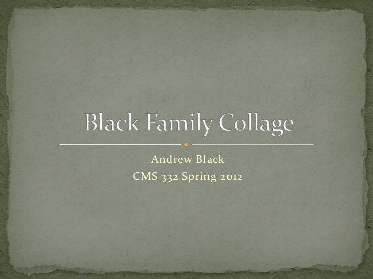 Andrew BlackCMS 332 Spring 2012