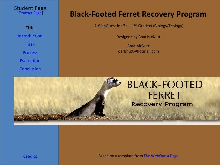 Black Footed Ferret Webquest