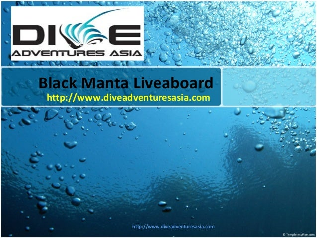 Black manta liveaboard
