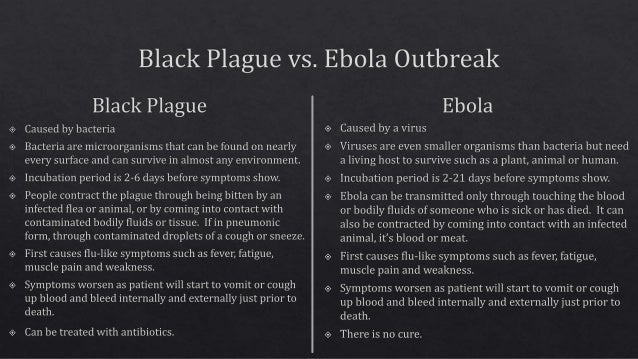 black death plague essay