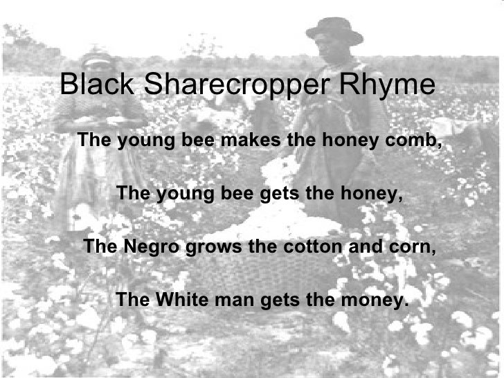Black Sharecropper Rhyme The young bee makes the honey comb,  The young bee gets the honey,  The Negro grows the cotton an...