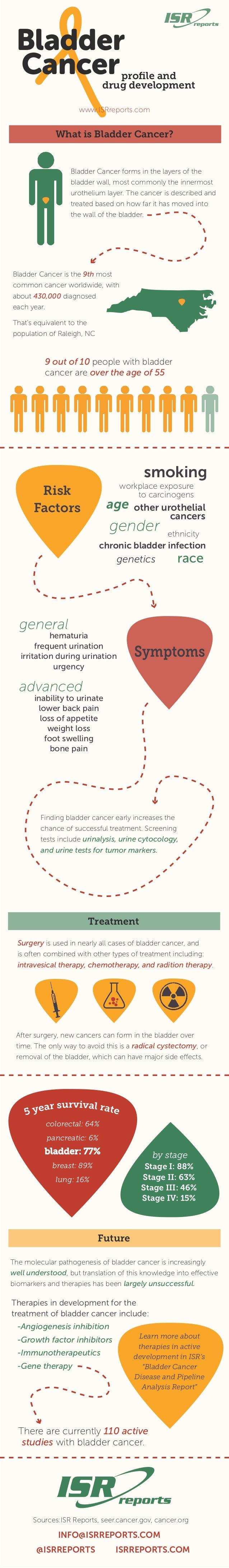 Bladder Cancer: profile and drug development