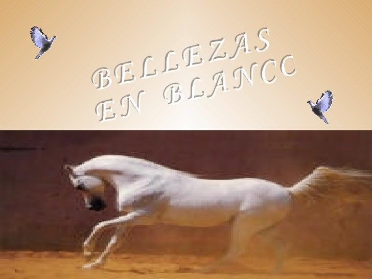 BELLEZAS EN  BLANCO