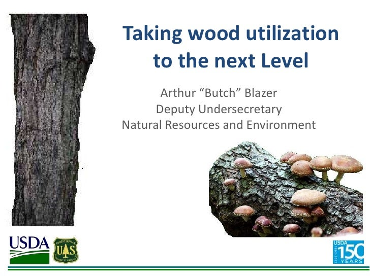 "Taking wood utilization   to the next Level      Arthur ""Butch"" Blazer     Deputy UndersecretaryNatural Resources and Envi..."