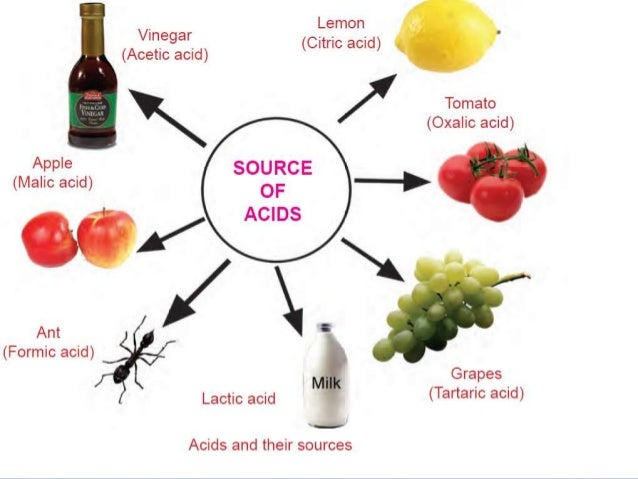 Foods That Contain Lactic Acid