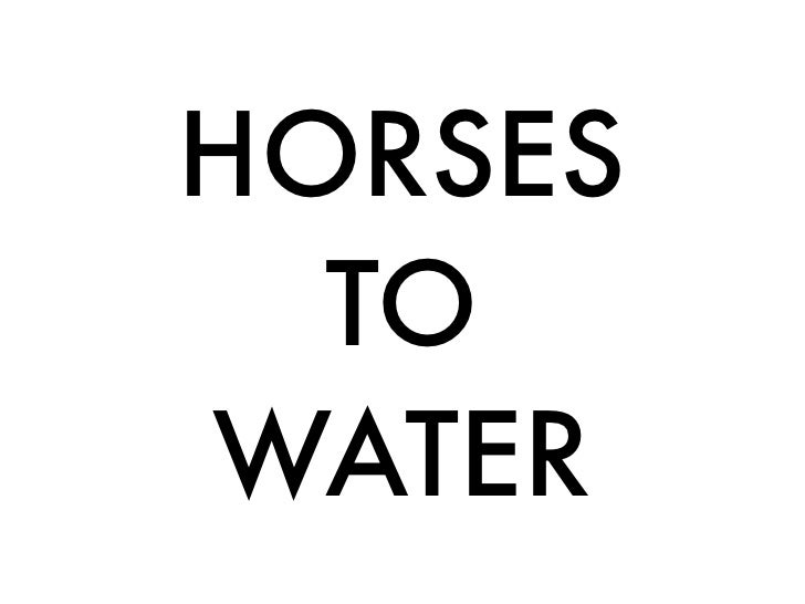 """HORSES TO WATER"""