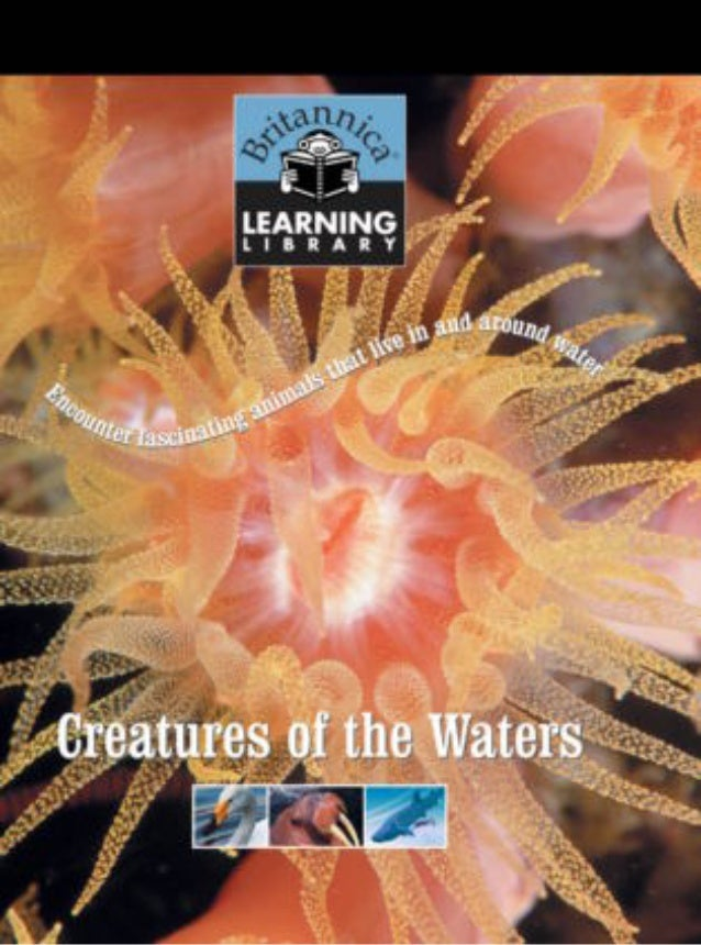 Bll 15   creatures of the waters