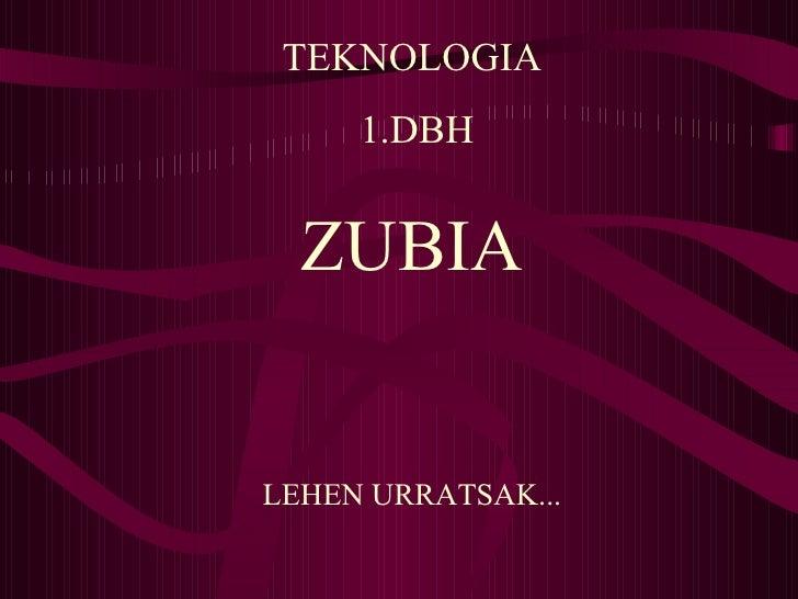 Blog Zubia 1