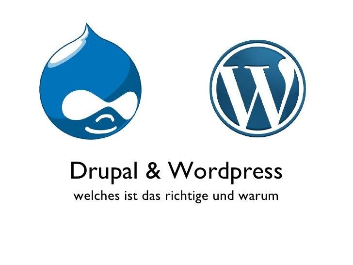 Drupal & Wordpress welches ist das richtige und warum