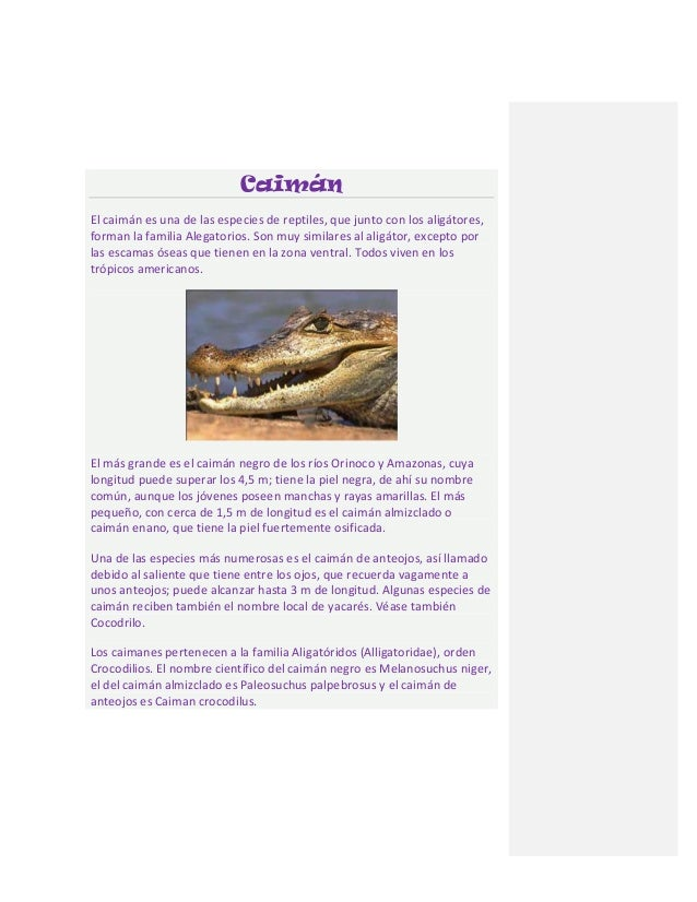 CaimánEl caimán es una de las especies de reptiles, que junto con los aligátores,forman la familia Alegatorios. Son muy si...