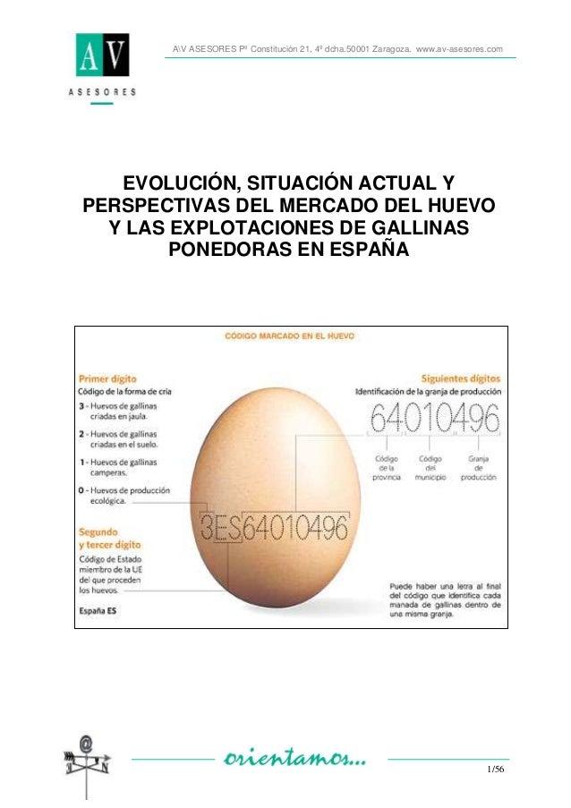 AV ASESORES Pº Constitución 21, 4º dcha.50001 Zaragoza. www.av-asesores.com 1/56 EVOLUCIÓN, SITUACIÓN ACTUAL Y PERSPECTIVA...