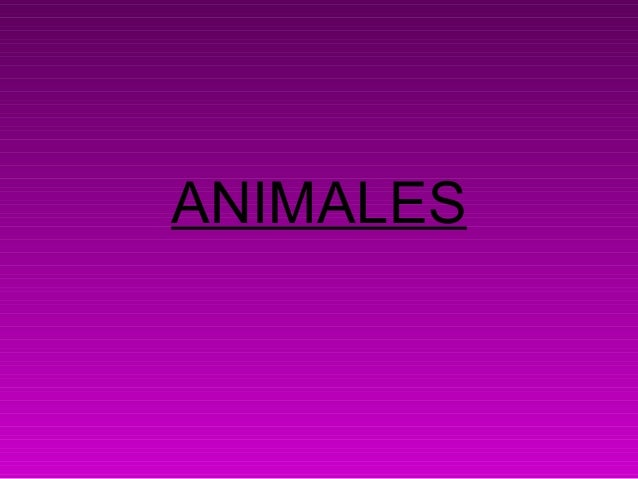 Blog power point animales
