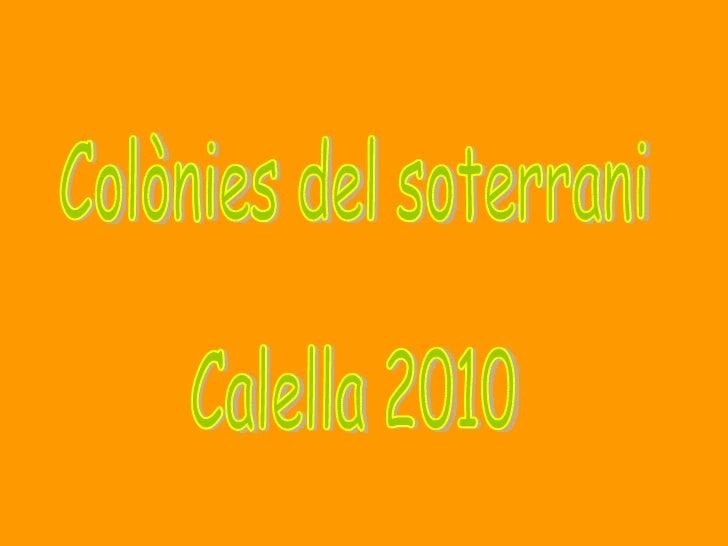 Colònies del soterrani Calella 2010