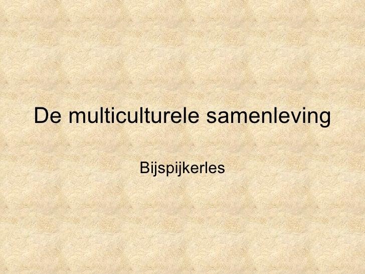 De multiculturele samenleving Bijspijkerles