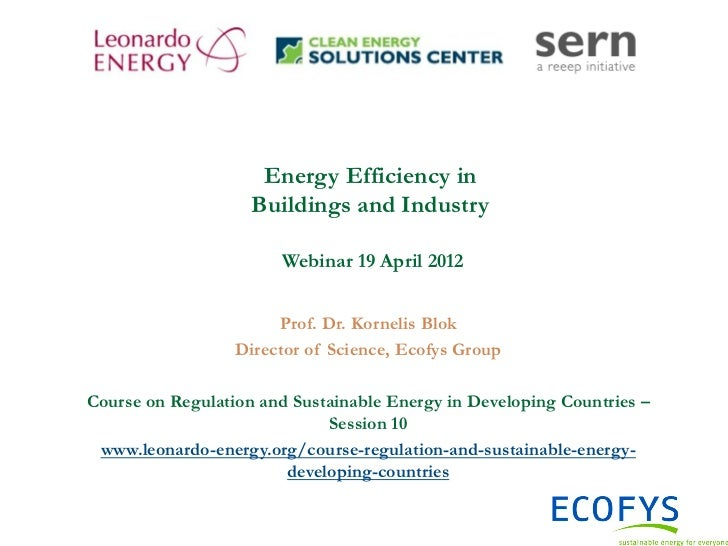 Course on Regulation and Sustainable Energy in Developing Countries - Session 10