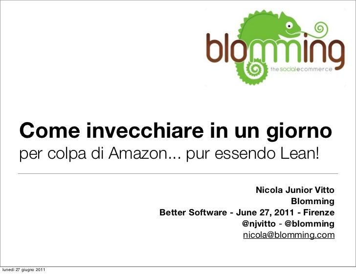 Blomming Lean Startup @ Better Software 2011