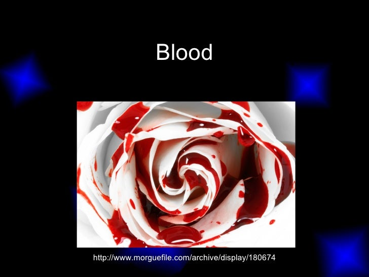 Blood http://www.morguefile.com/archive/display/180674