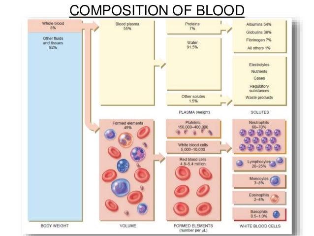 steroid protein conjugates