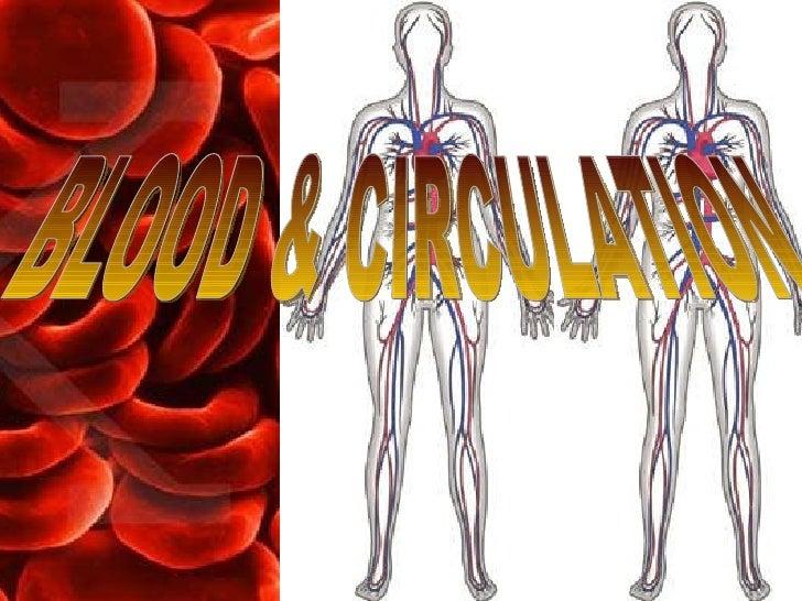 13 Blood & Circulation