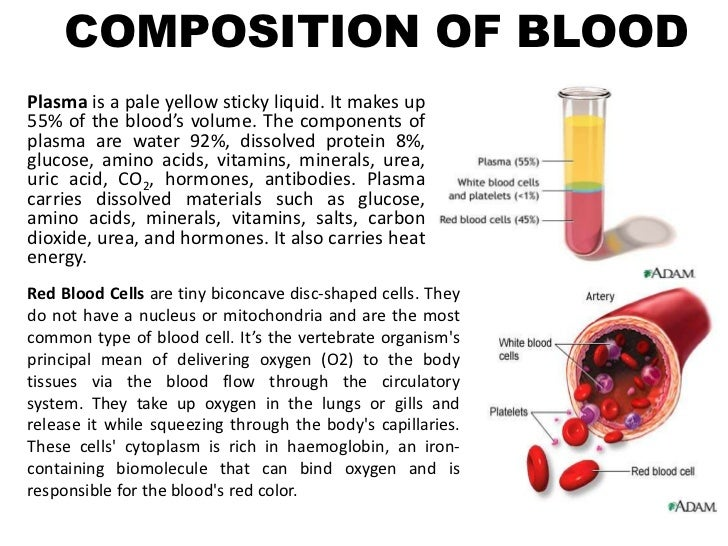 composition of blood The blood that runs through the veins, arteries, and capillaries is known as whole blood, a mixture of about 55 percent plasma and 45 percent blood cells about 7 to 8 percent of your total body weight is blood.