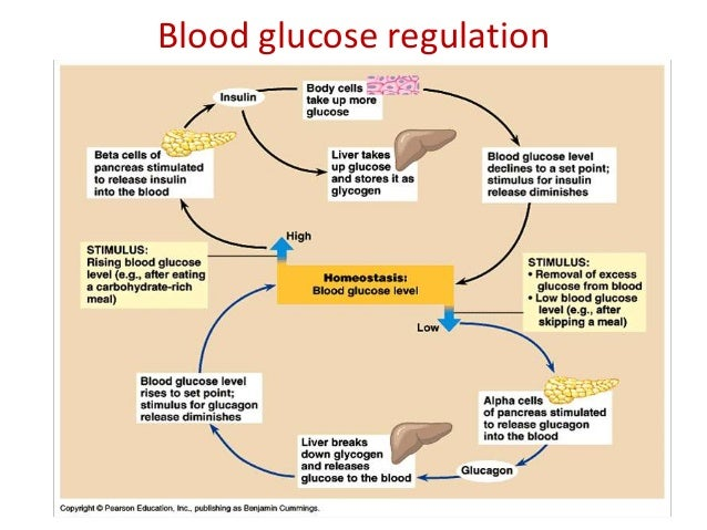 Losartan And Glucose Levels