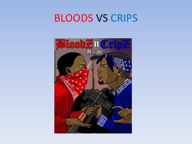 BLOODS VS CRIPS <br />
