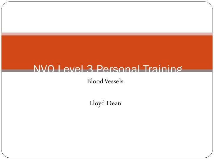 Blood Vessels Lloyd Dean NVQ Level 3 Personal Training