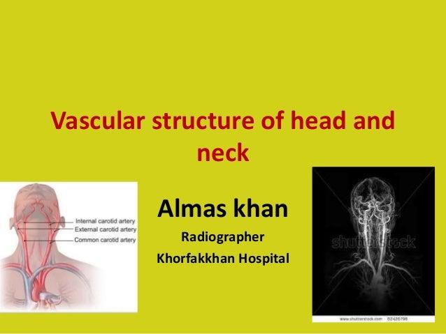 Vascular structure of head and neck Almas khan Radiographer Khorfakkhan Hospital