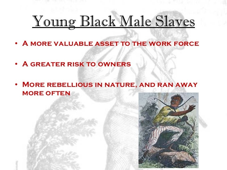 an examination of the development of slavery in the us colonies United states history and government thursday  11 the development of political parties and of the the united states had acquired colonies in.