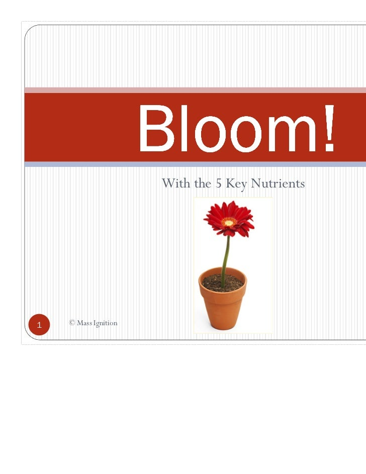 Bloom!                      With the 5 Key Nutrients1   © Mass Ignition