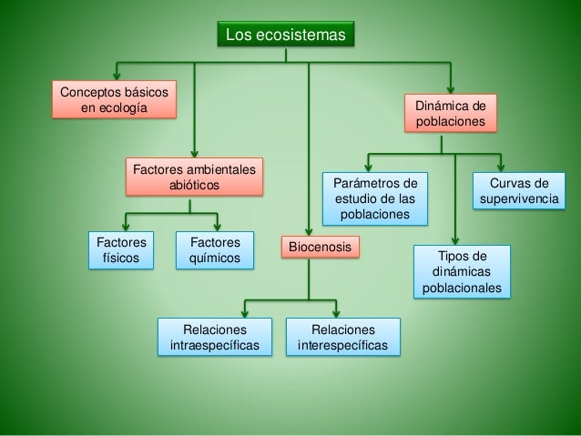 Biología PAU. Ecología. Los ecosistemas. ESP