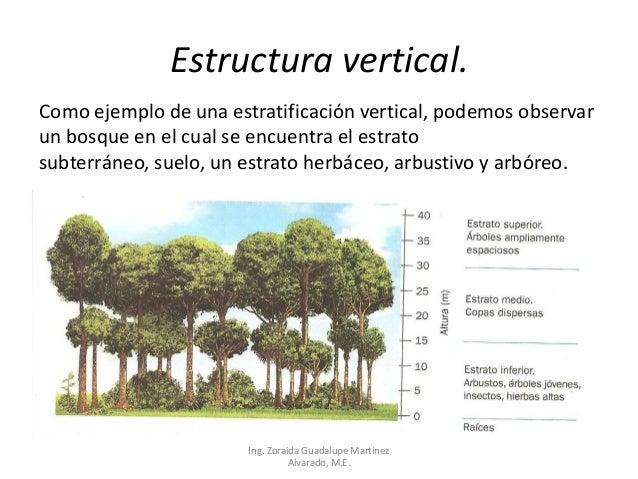 Bloque 2 ecologia y medio ambientee for Estructura para jardin vertical