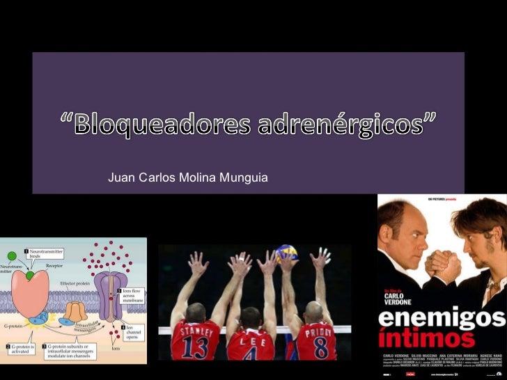 Juan Carlos Molina Munguia