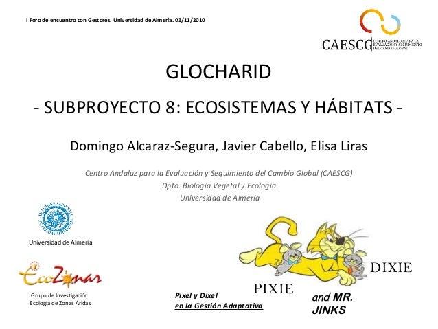 GLOCHARID - SUBPROYECTO 8: ECOSISTEMAS Y HÁBITATS - Grupo de Investigación Ecología de Zonas Áridas Universidad de Almería...