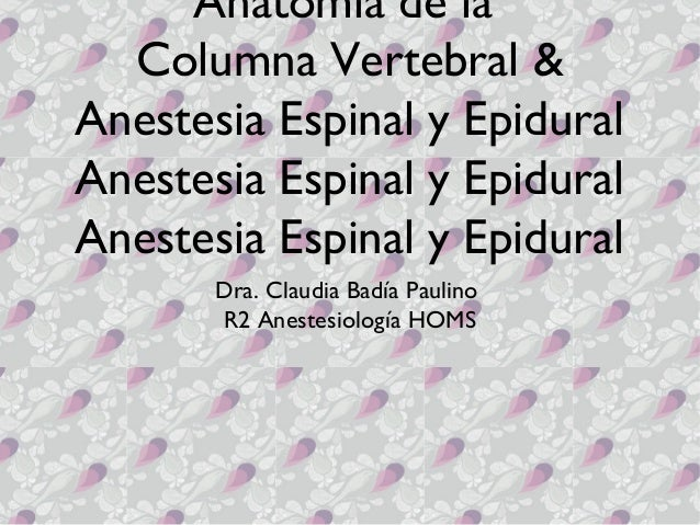 Anatomía de la  Columna Vertebral &Anestesia Espinal y EpiduralAnestesia Espinal y EpiduralAnestesia Espinal y Epidural   ...