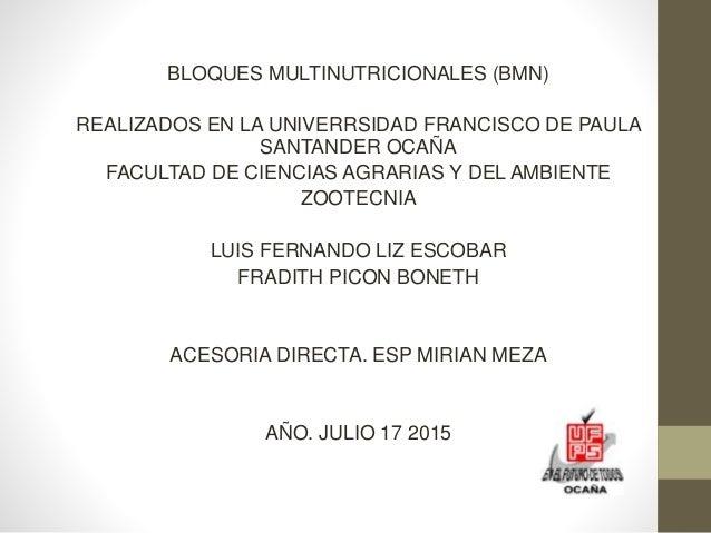 BLOQUES MULTINUTRICIONALES (BMN) REALIZADOS EN LA UNIVERRSIDAD FRANCISCO DE PAULA SANTANDER OCAÑA FACULTAD DE CIENCIAS AGR...