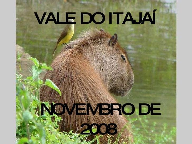VALE DO ITAJAÍ  NOVEMBRO DE 2008