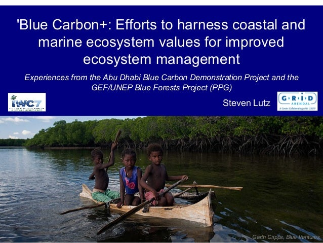 'Blue Carbon+: Efforts to harness coastal and marine ecosystem values for improved ecosystem management Experiences from t...